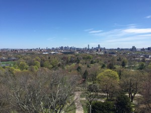 Boston and Brookline from the tower in Mount Auburn Cemetery.